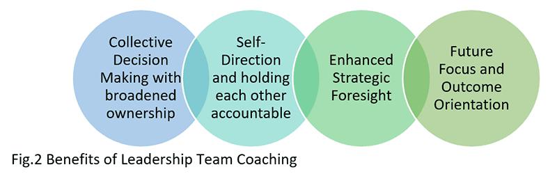 Leadership Team Coaching Elements